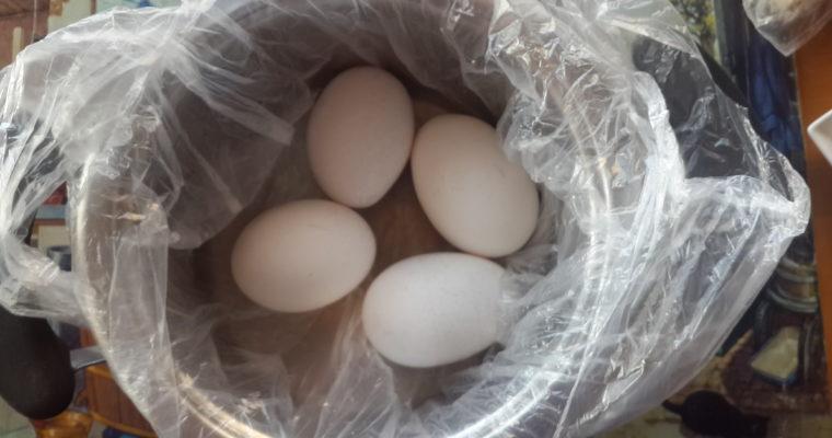 Yumurtayı Çatlatmadan Haşlama Yöntemi